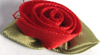 001 250 - Large ribbon roses bag of 100